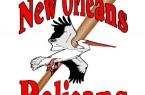 New Orleans Pelicans Baseball Logo