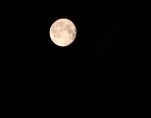 StarlessNight