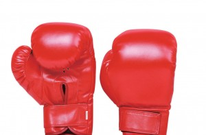 BOXING-GLOVES-JY9103[1]