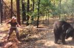 pokeing-bear[3]